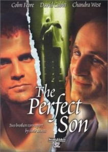 the-perfect-son1
